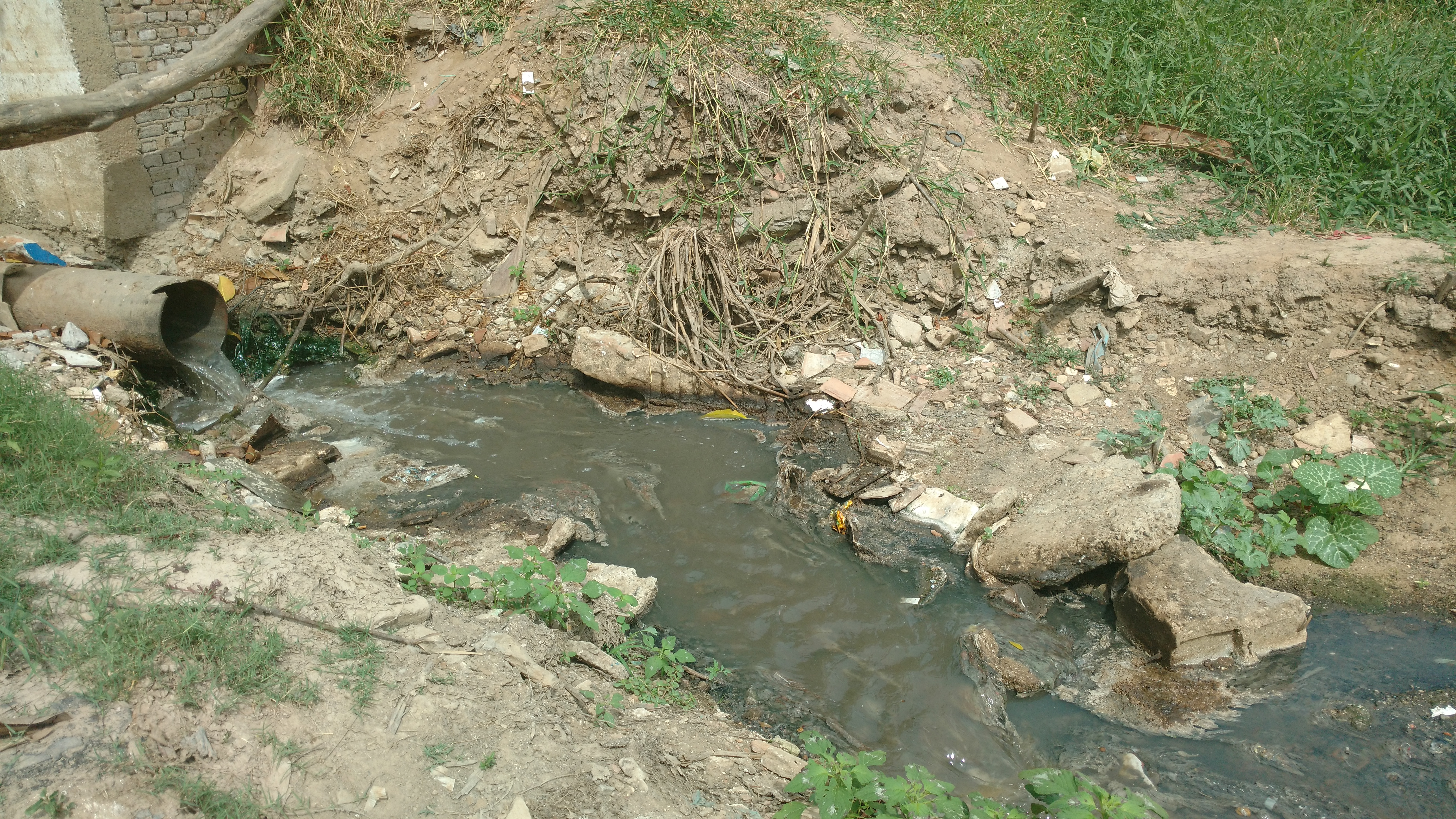 Um dos pontos de Aparecida onde o esgoto deságua no rio Paraíba (Rafael Rodrigues)