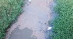 Morador acusa Prefeitura de descarte irregular de esgoto em córrego de Potim