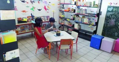 Biblioteca Lorena (8)