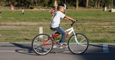 Bicicleta Pinda 2