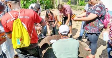 Estudantes participam de atividades para conscientização no cuidado com meio ambiente em Lorena (Foto: Divulgação)