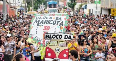 Milhares de foliões lotam as ruas de Pinda durante os quatro dias de folia; região atraiu bom público em 2018 (Foto: Leandro Oliveira)