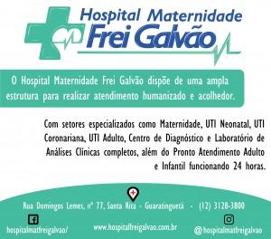 HOSPITAL FREI GALVÃO ARTE PARA PUBLICAÇÃO FINAL