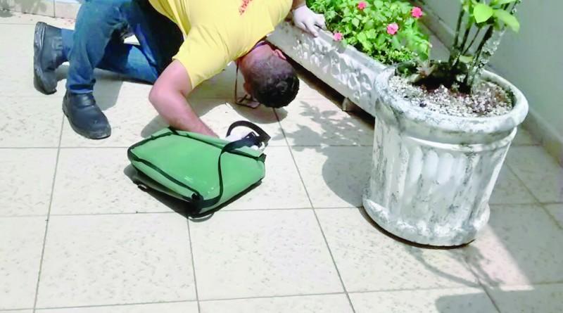 Agente da Vigilância Epidemiológica busca criadouros do mosquito (Foto: Divulgação PMC)