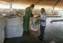Operação Campo Limpo coleta embalagens de defensivos agrícolas na região