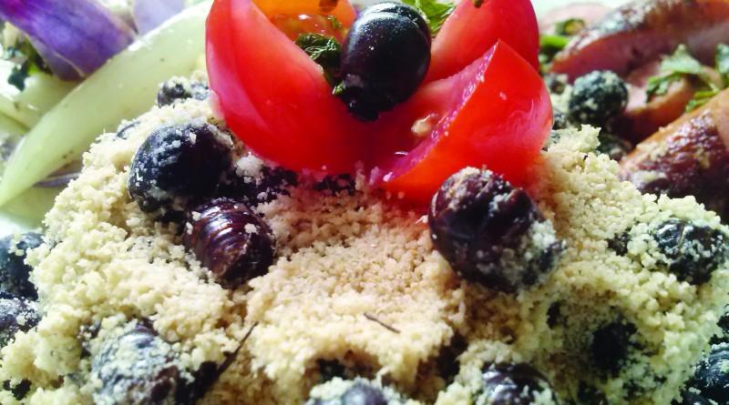 Culinária com içá é tema de festival em Silveiras; evento chega a terceira edição (Foto: Reprodução)