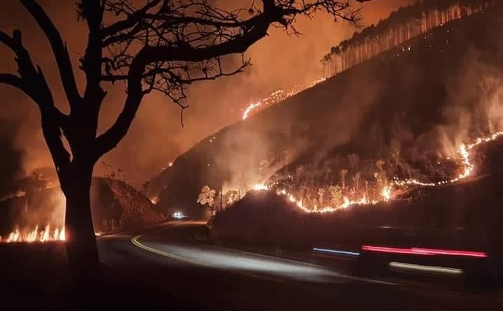 Corpo de Bombeiros intensifica combate ao incêndio na mata entre Cunha e Guará
