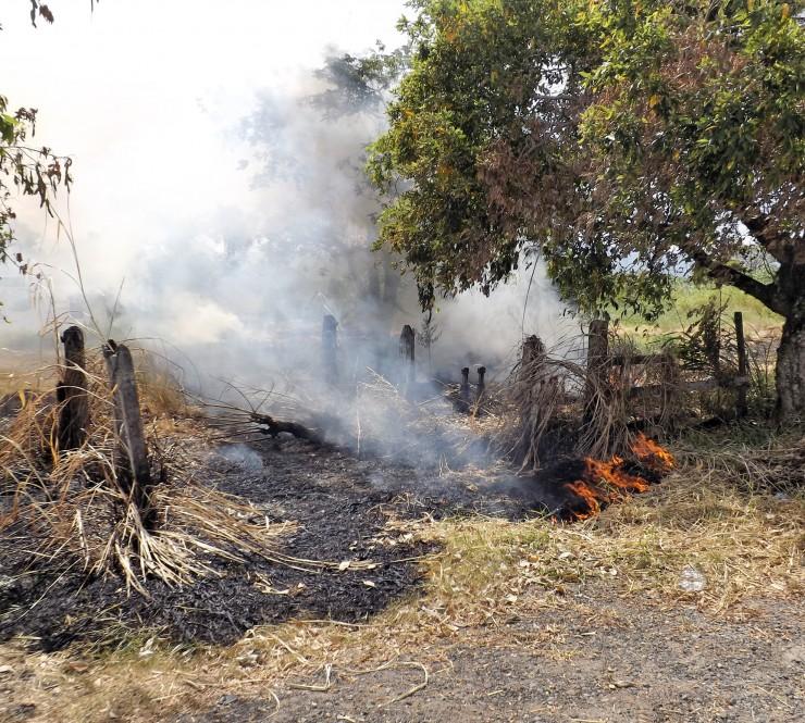 Moradores cobram rigor em fiscalização da Prefeitura por queimadas em Lorena