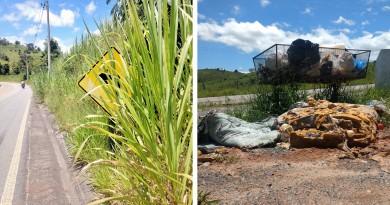 Placa escondida pelo mato alto e lixo às margens da rodovia; problemas na Estrada da Bocaina são alvos de reclamações na cidade (Foto: Jéssica Dias)