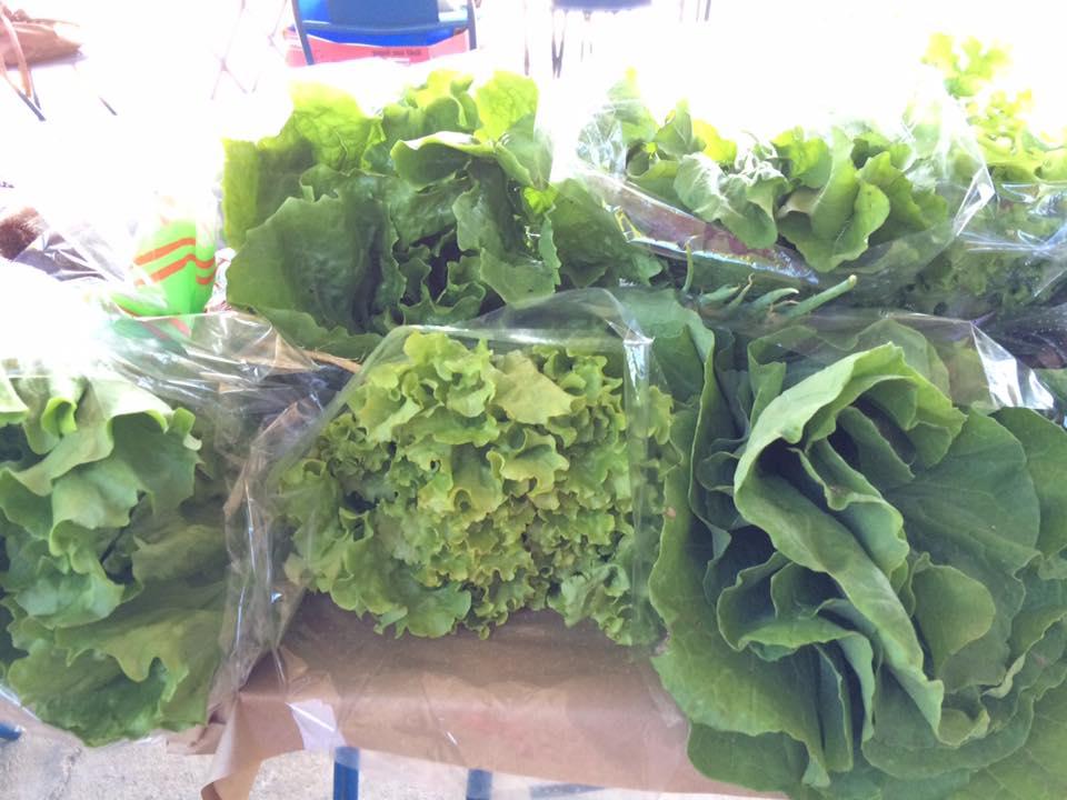 Frutas e legumes em edição anterior da Feira do Agricultor; Lorena tem vagas para evento que volta à cidade (Foto: Reprodução)