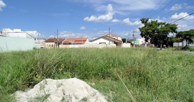 Terreno em área residencial de Pindamonhangaba; cidade inicia período para regularização (Foto: Arquivo Atos)