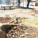 Com aporte de cerca de R$ 500 mil, iniciativa privada recupera área de lazer para o Jardim Coelho Neto