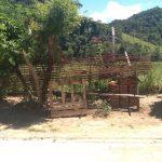 Silveiras endurece regras contra descarte em terrenos